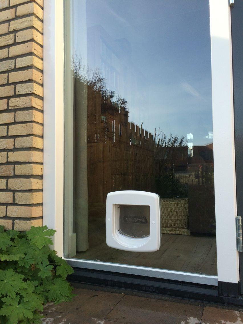 kattenluik in dubbel glas de mooiste oplossing home