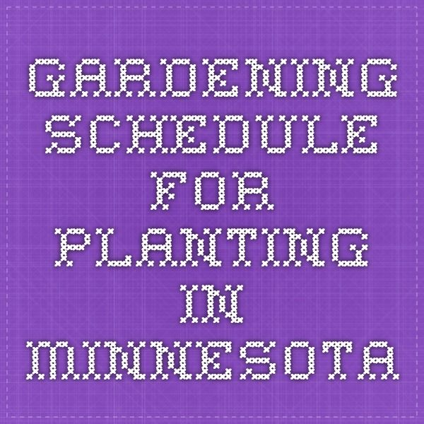 gardening schedule for planting in minnesota vegetable