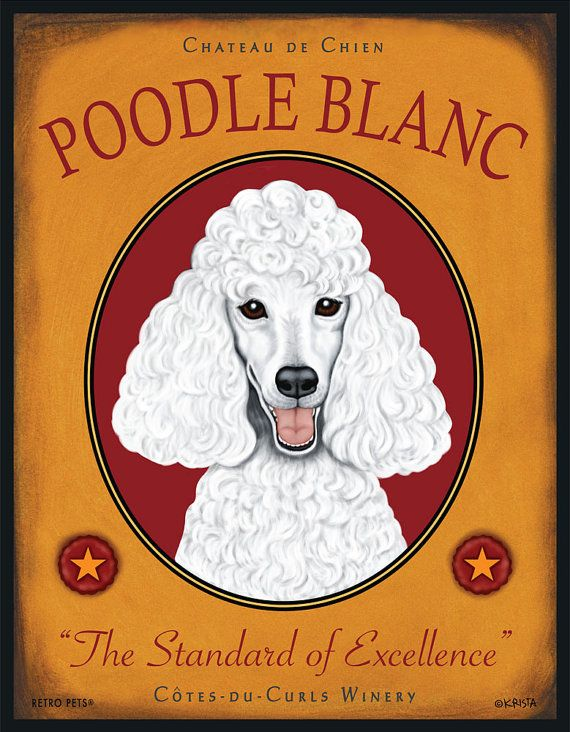 White Poodle Art  Poodle Blanc  The Standard by RetroPetsGallery, $35.00