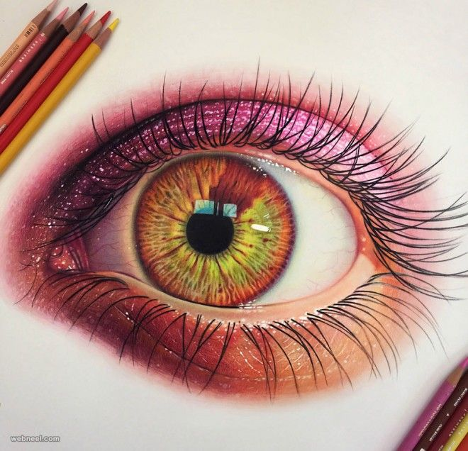 25 Stunning and Realistic Color Pencil Drawings by Morgan Davidson ...