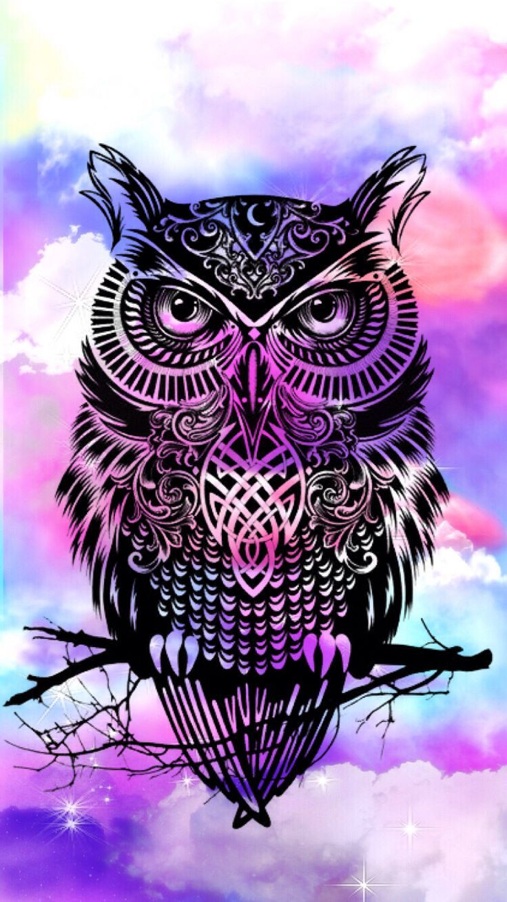 A Picture From Kefir Kefirapp Com Owl Wallpaper Iphone Wallpaper Hipster Owl Wallpaper Iphone