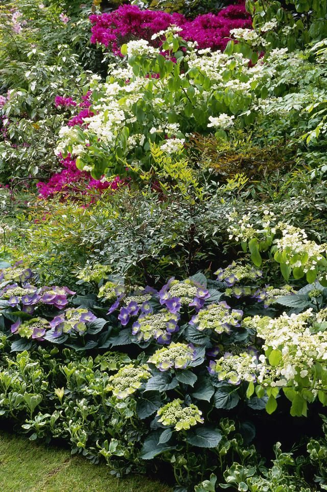 Get flower garden ideas from Great Britainu0027s