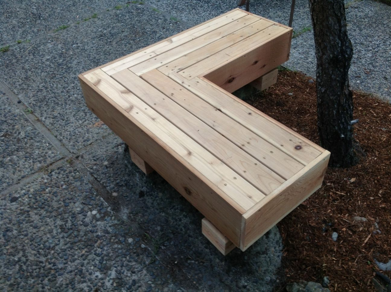 A Place In The Shade Tree Bench Garden Transformation