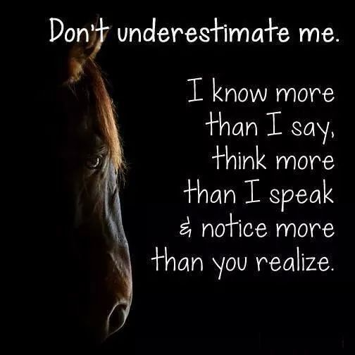 Don't underestimate mr. I know more than I say, think more than I speak & notice more than you realize.