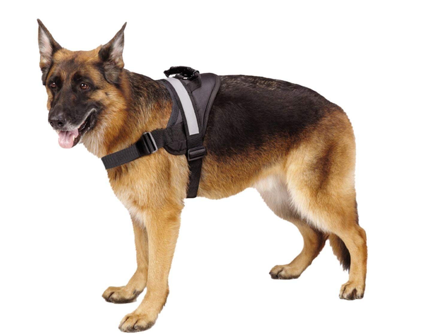 Big Dog Soft Reflective No Pull Harness We Appreciate You For