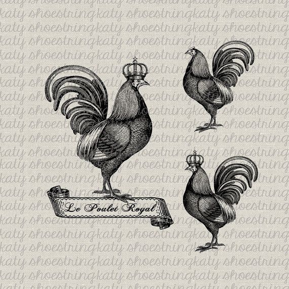 3 Vintage French Rooster Illustrations Digital Download And Print Image Transfer Iron On Transfer Burlap Pillows Tea Towels Totes