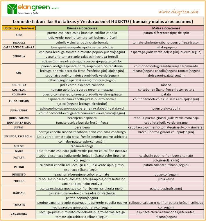 Asociaci n de cultivos en el huerto buenas y malas for Asociacion de plantas en el huerto