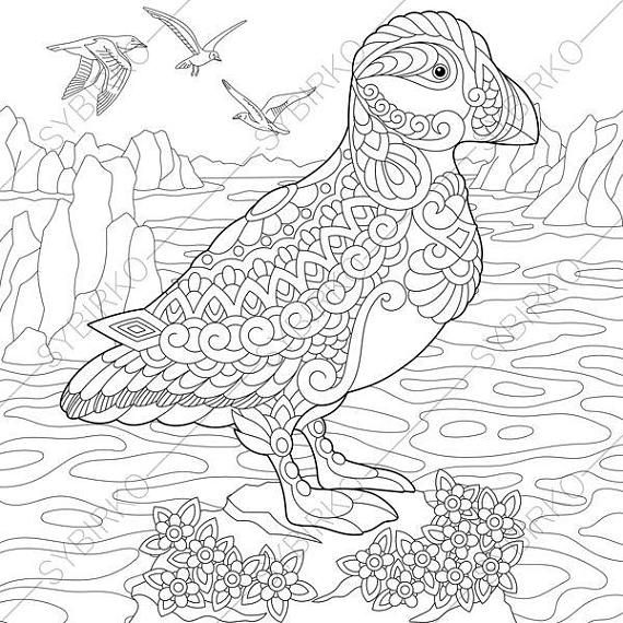 Adult Coloring Pages Puffin Zentangle Doodle Coloring Book With