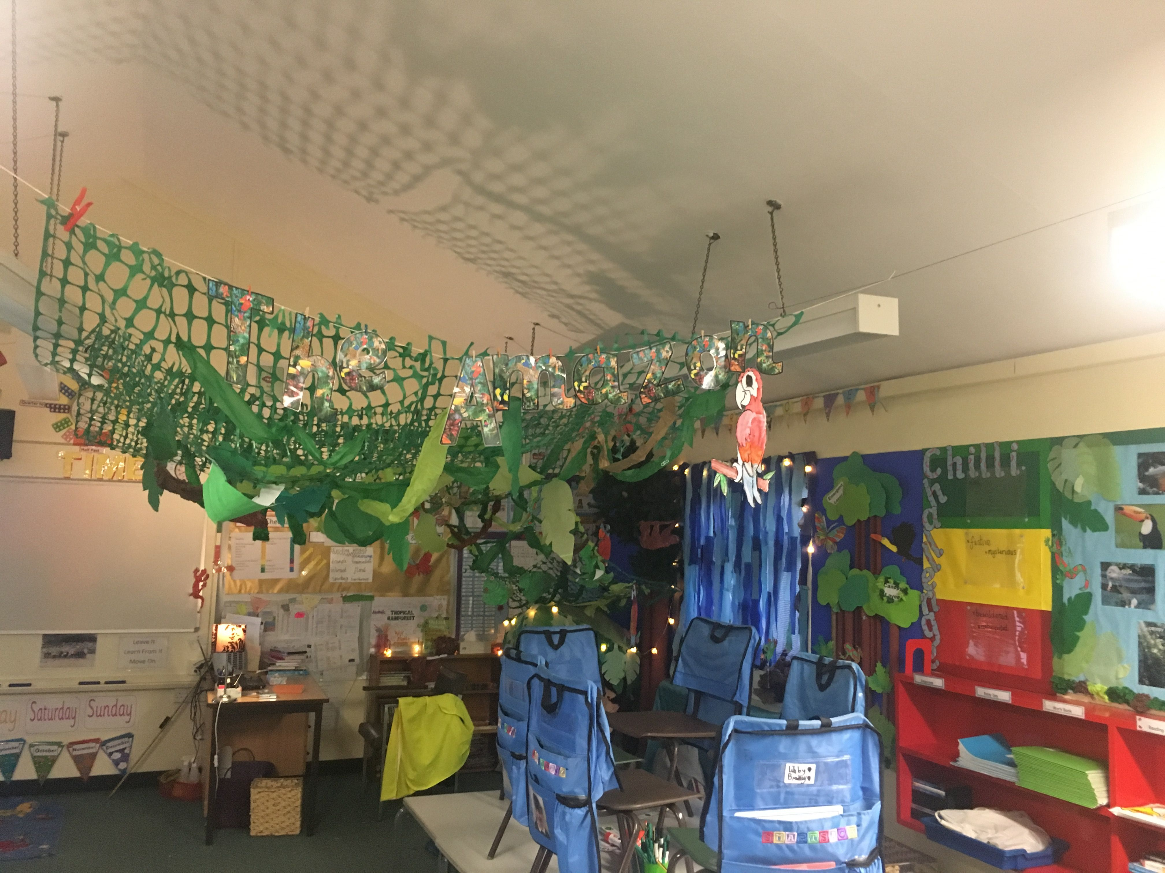 Year 3 classroom rainforest canopy layer hanging down with netting and tissue paper. The children & Year 3 classroom rainforest canopy layer hanging down with netting ...