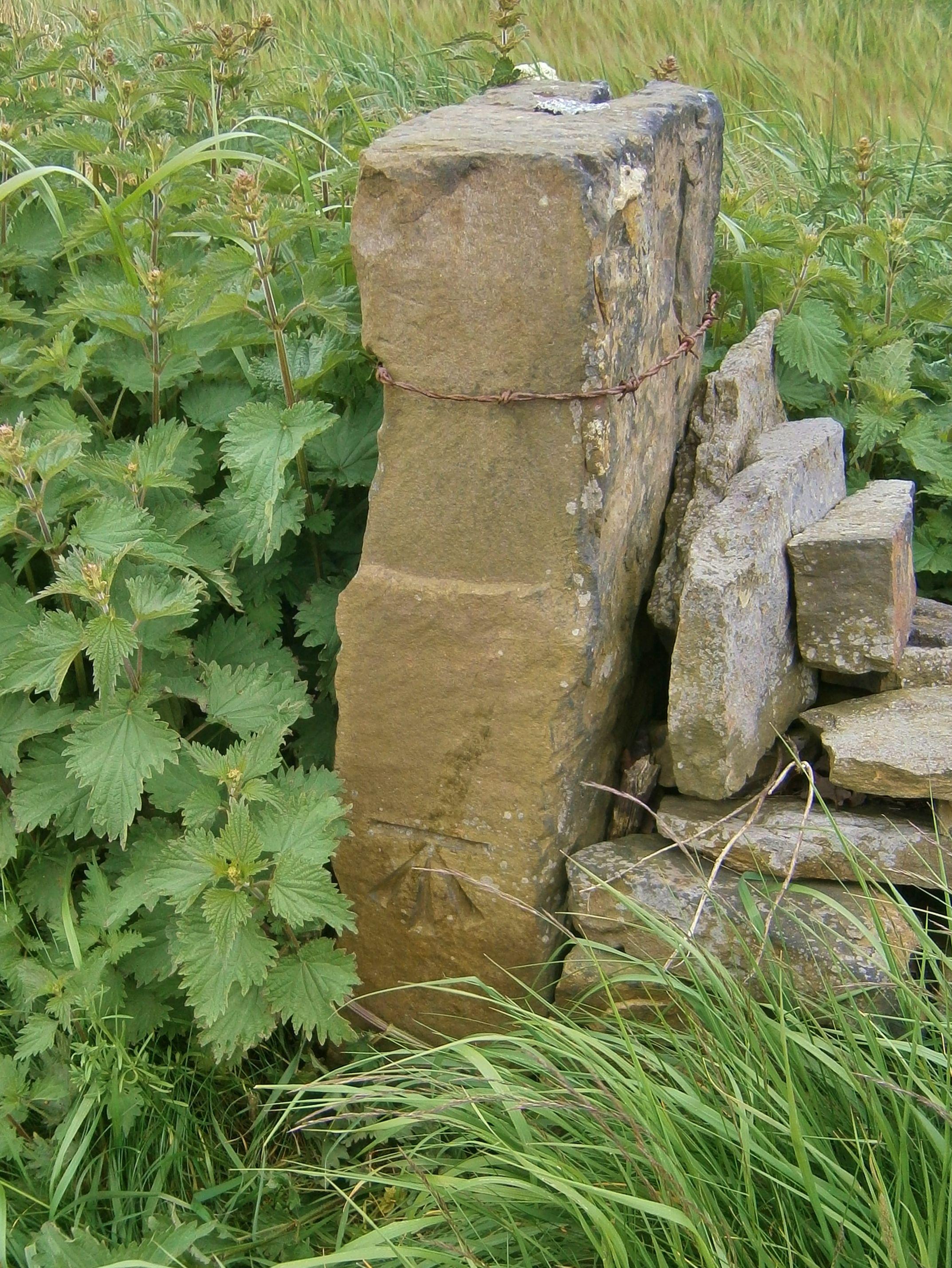 Cut Mark: Skelmanthorpe, Cross Lane   SE 23086 10012