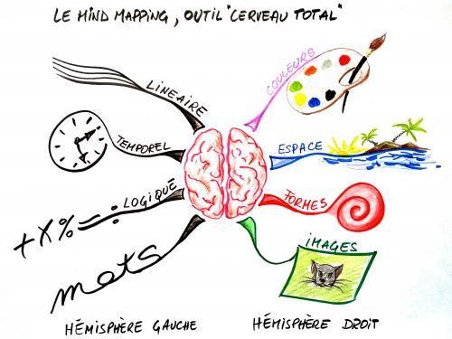 Mind-mapping : apprendre à organiser ses idées | Dessiner avec le ...