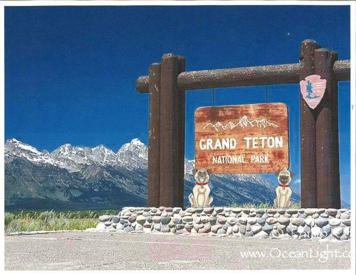 Grand Teton National Park is the next stop on our tour. We love these wide open spaces out West. We're having a riot in Wyoming!!
