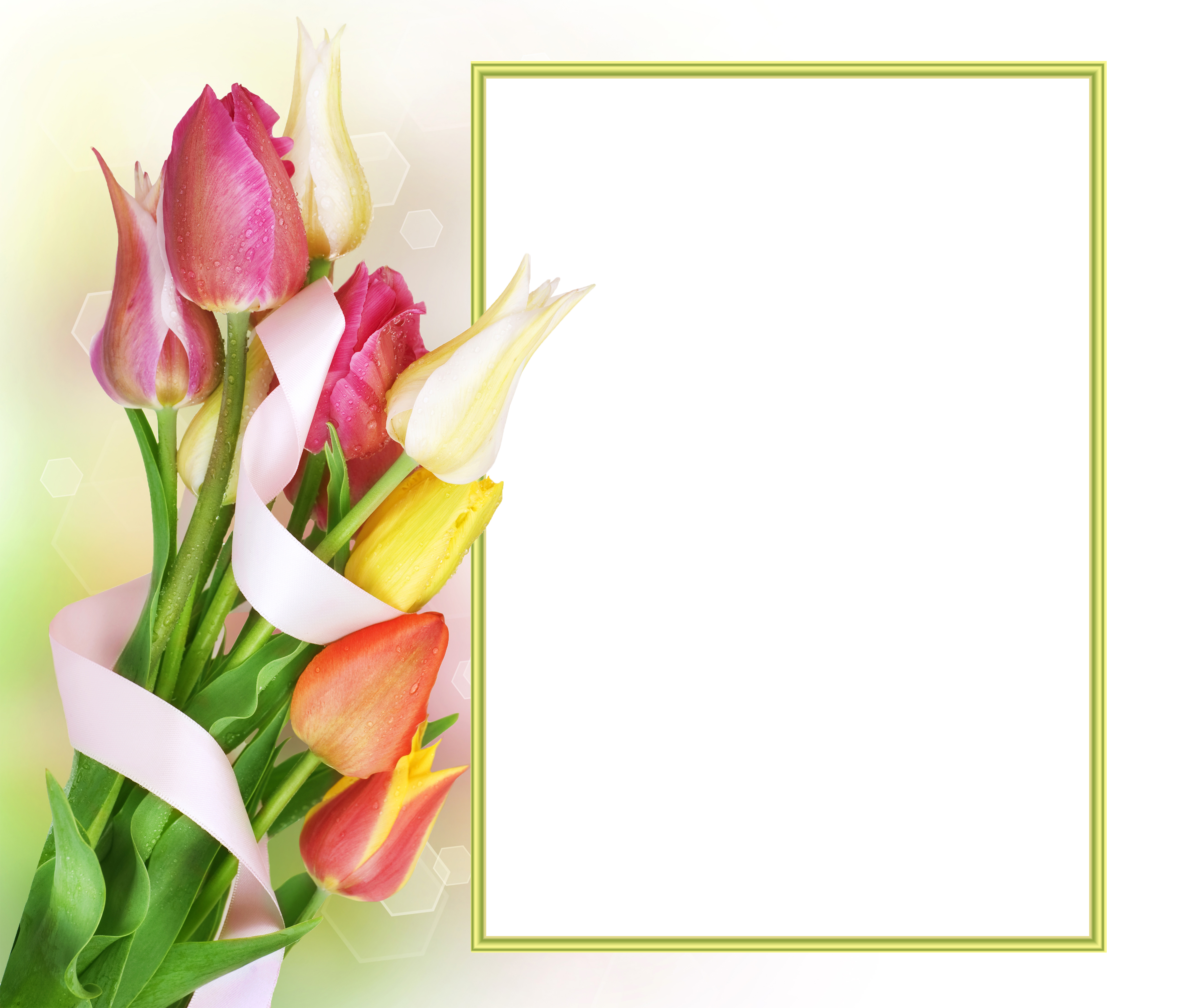 Of tulips cecila san tags flower field photoshop vintage tulips - Tulips Transparent Png Photo Frame