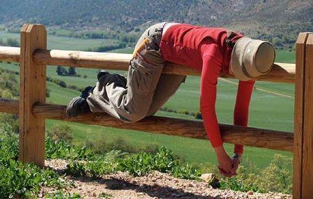Los beneficios de echar una siesta | NOTICIAS AL TIEMPO