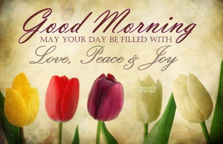 Good Morning May Your Day Be Filled With Peace Love And Joy Morning Good Morning Morning Quotes Good Morn Good Morning Good Morning Greetings Morning Blessings
