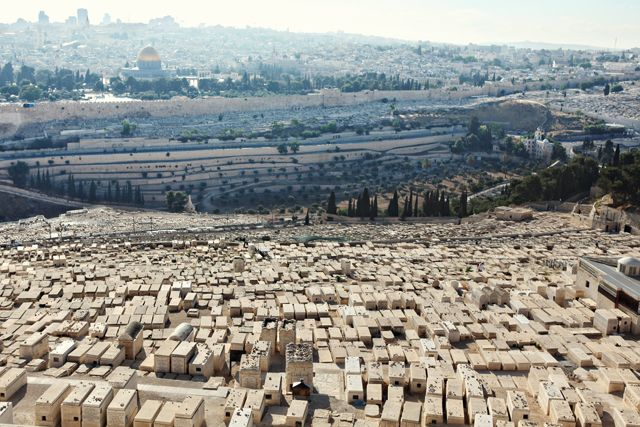 view from the mount of olives