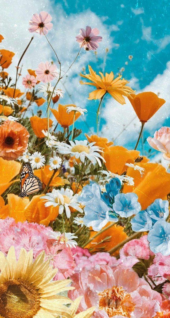 Flor Flores Plantas Botánica Floral Hermoso Fondo de pantalla Fondo Naturaleza Viajes | #flor