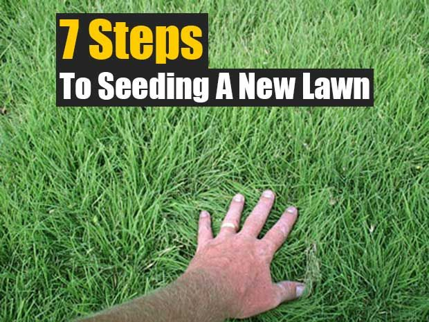 7 Steps To Seeding A New Lawn Planting Grass Lawn Scotts Lawn