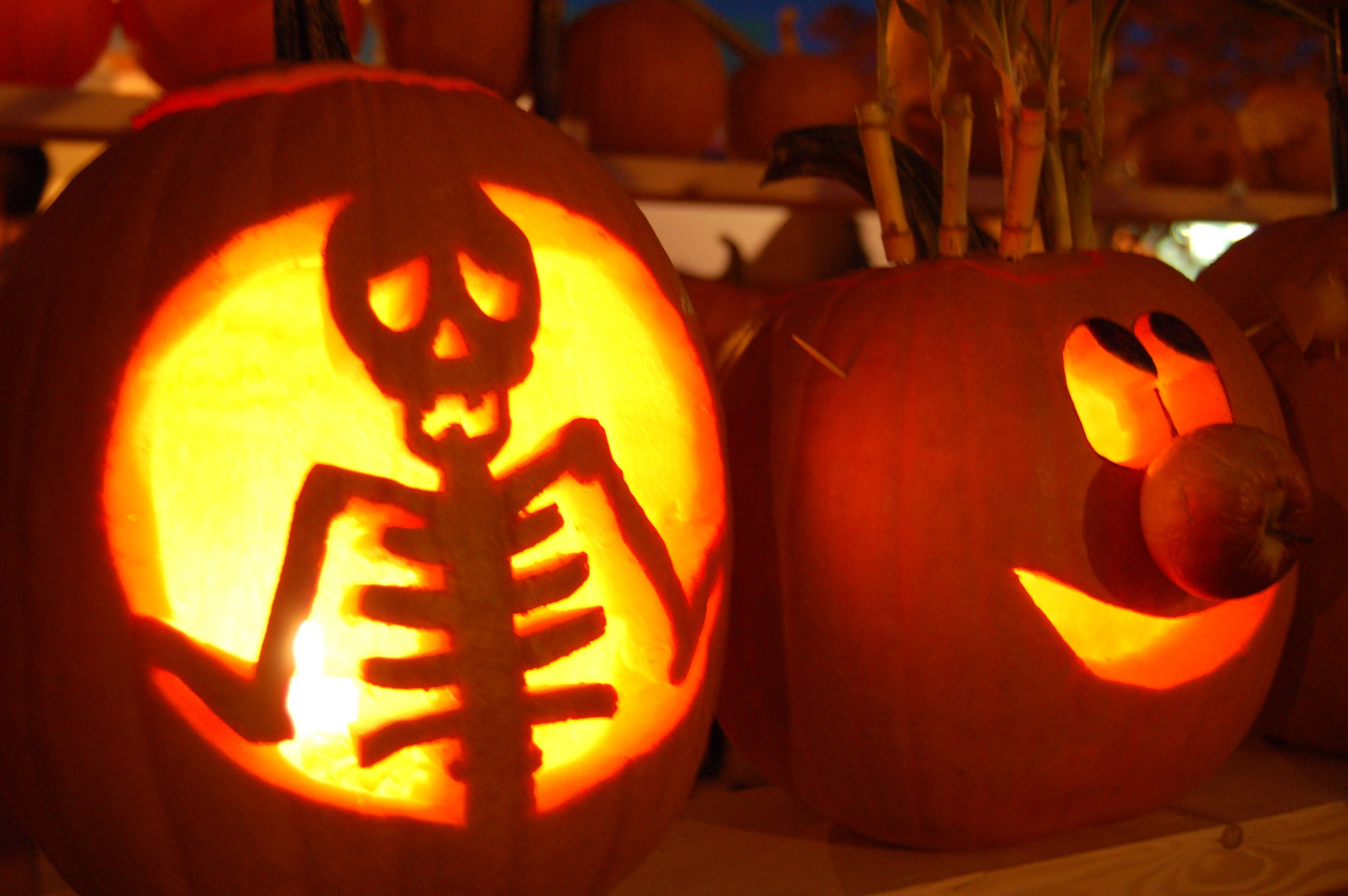 Uncategorized Pumpkim Designs pumpkin carving patterns with some cool for pumpkins you can light up the