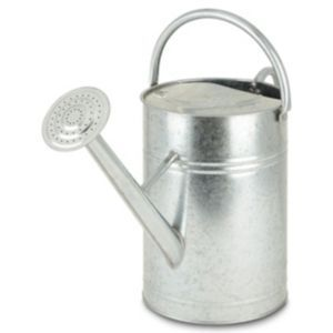 Steel Watering Can 3l Canning B Q Steel