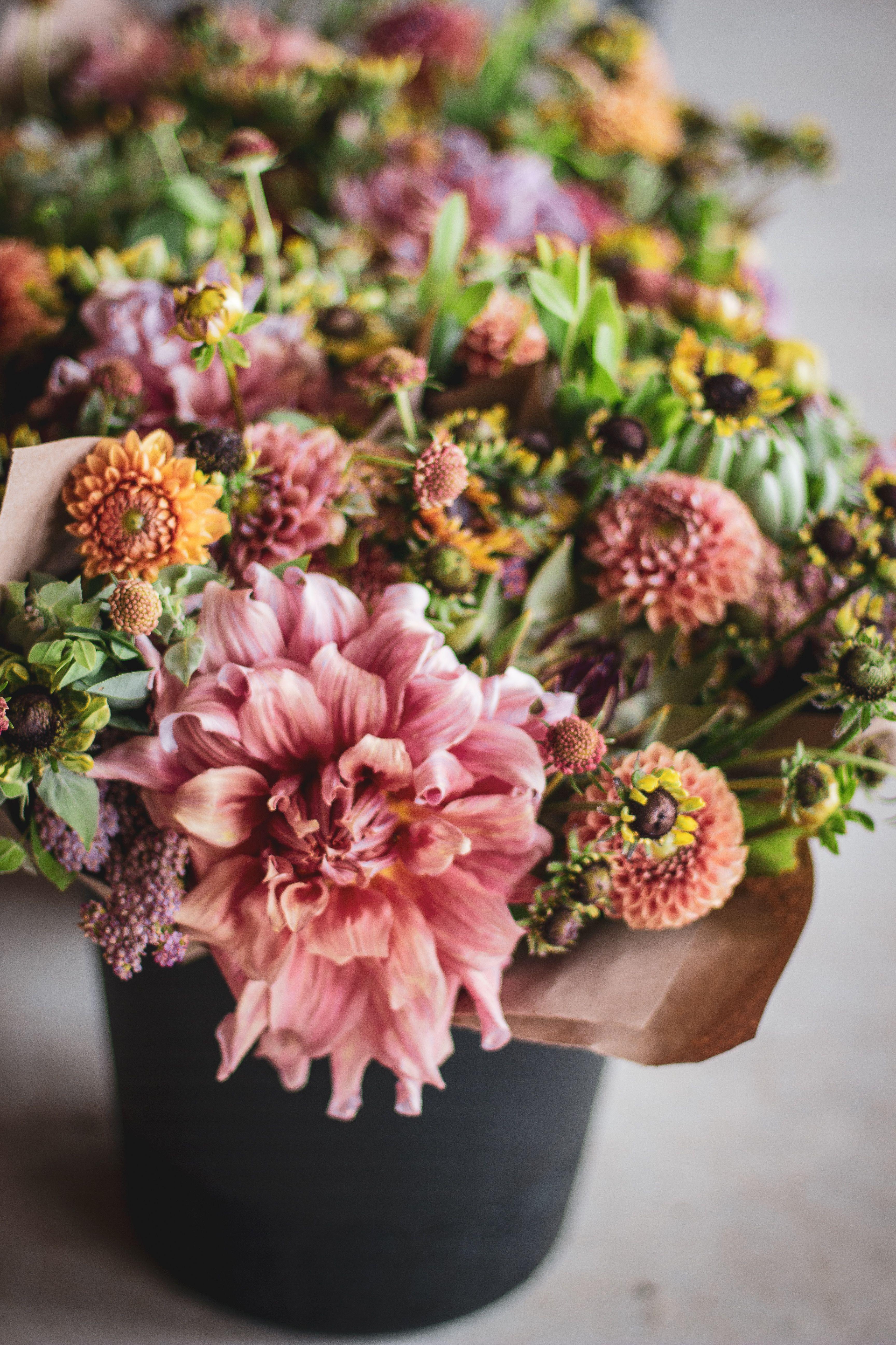 Buckets of flowers at love n fresh flowers a flower farm