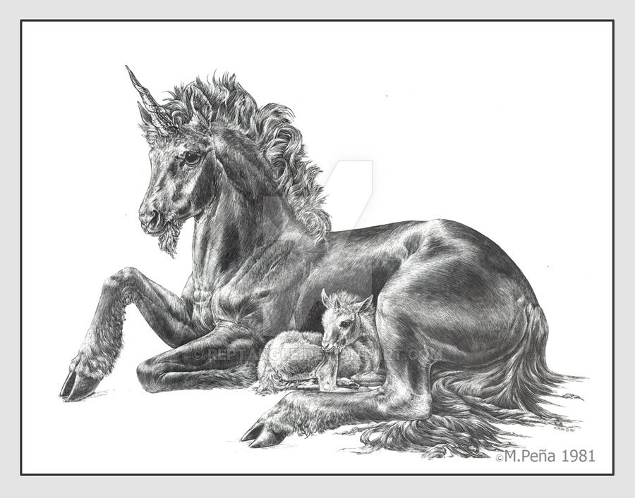 Mother and baby unicorn by Reptangle on DeviantArt ...
