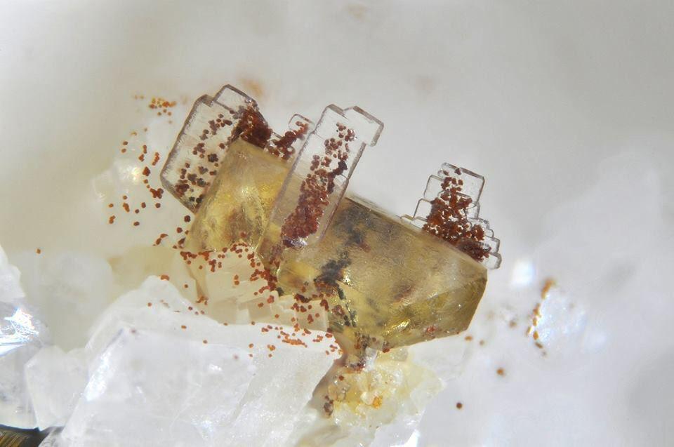 Baryte & sphalerite Lengenbach, Binntal, Switzerland  FOV : 2 mm  Photo : Mischa Crumbach