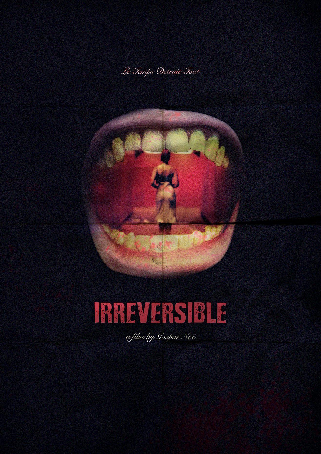 Irreversible Alternative Film Poster Poster De Peliculas Gaspar Noe Poster