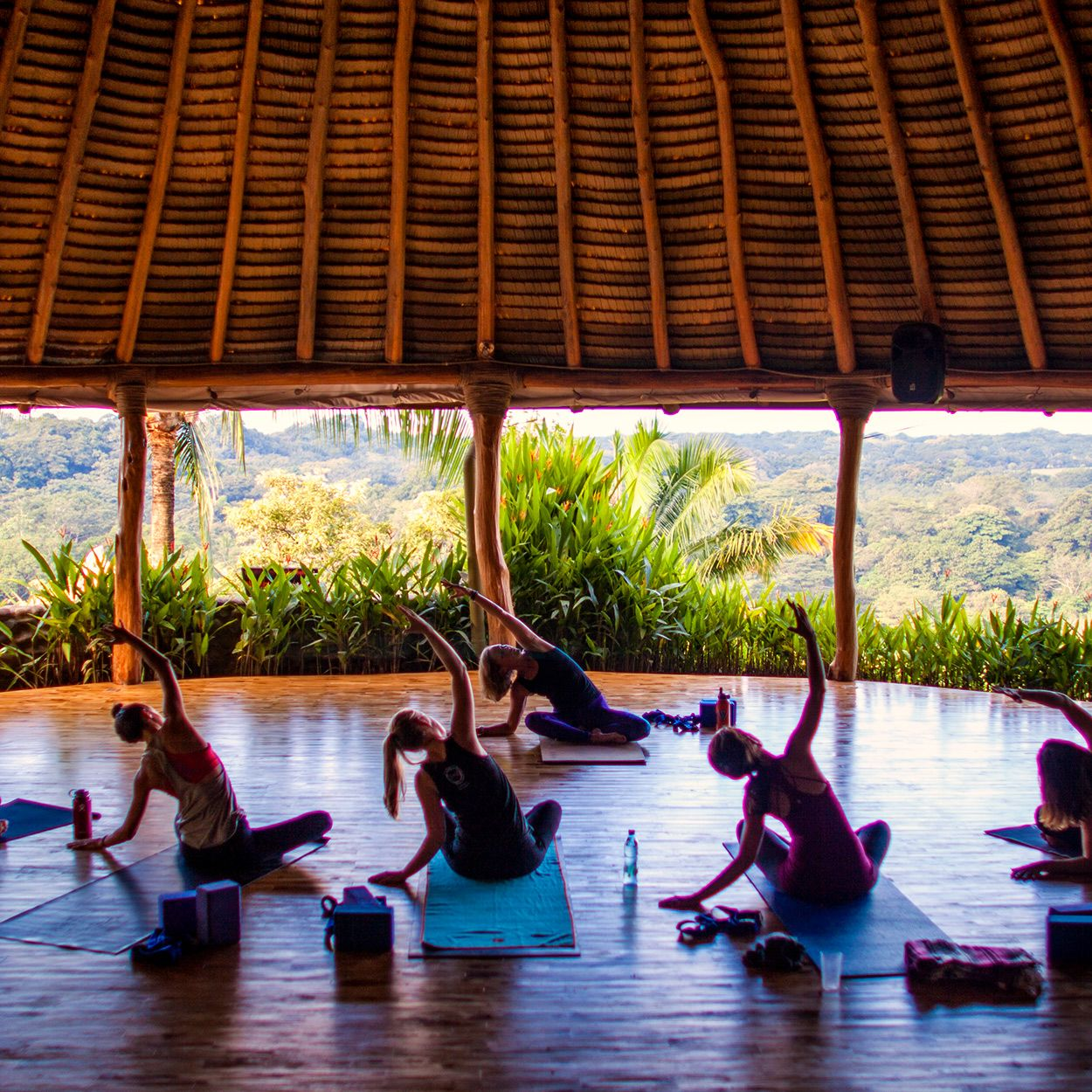Costa Rica Yoga Retreats With Five Parks Yoga In Nosara Yoga Retreat Costa Rica Yoga Retreats