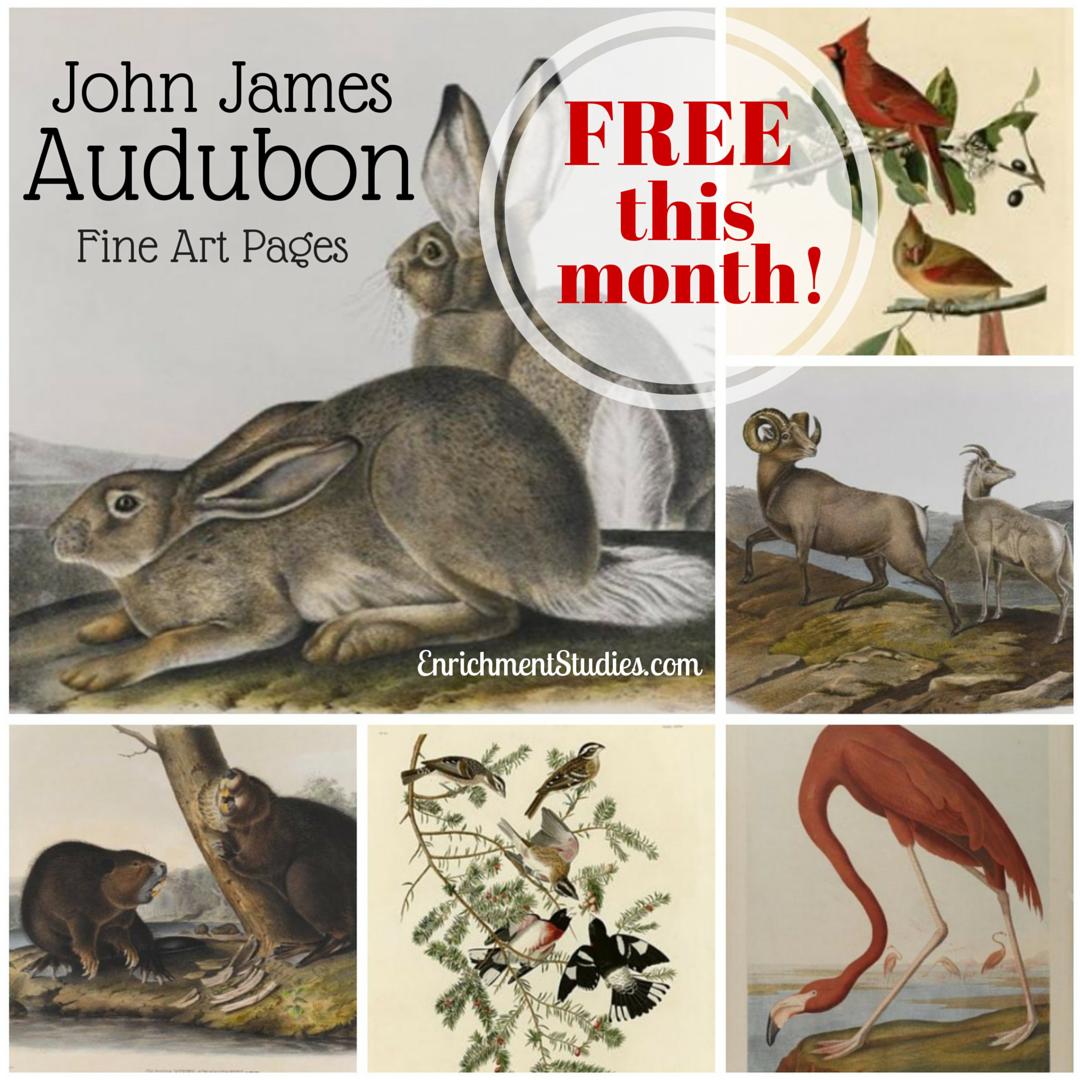 New John James Audubon Fine Art Pages