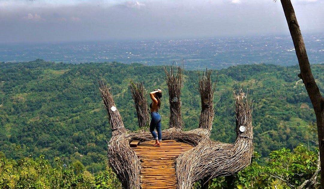 17 Pemandangan Alam Hutan Pinus Hutan Pinus Pengger Jogja Rimbakita Com Download 23 Destinasi Wisata Hutan Pinus Untuk Liburan Di 2020 Pemandangan Alam Pedesaan