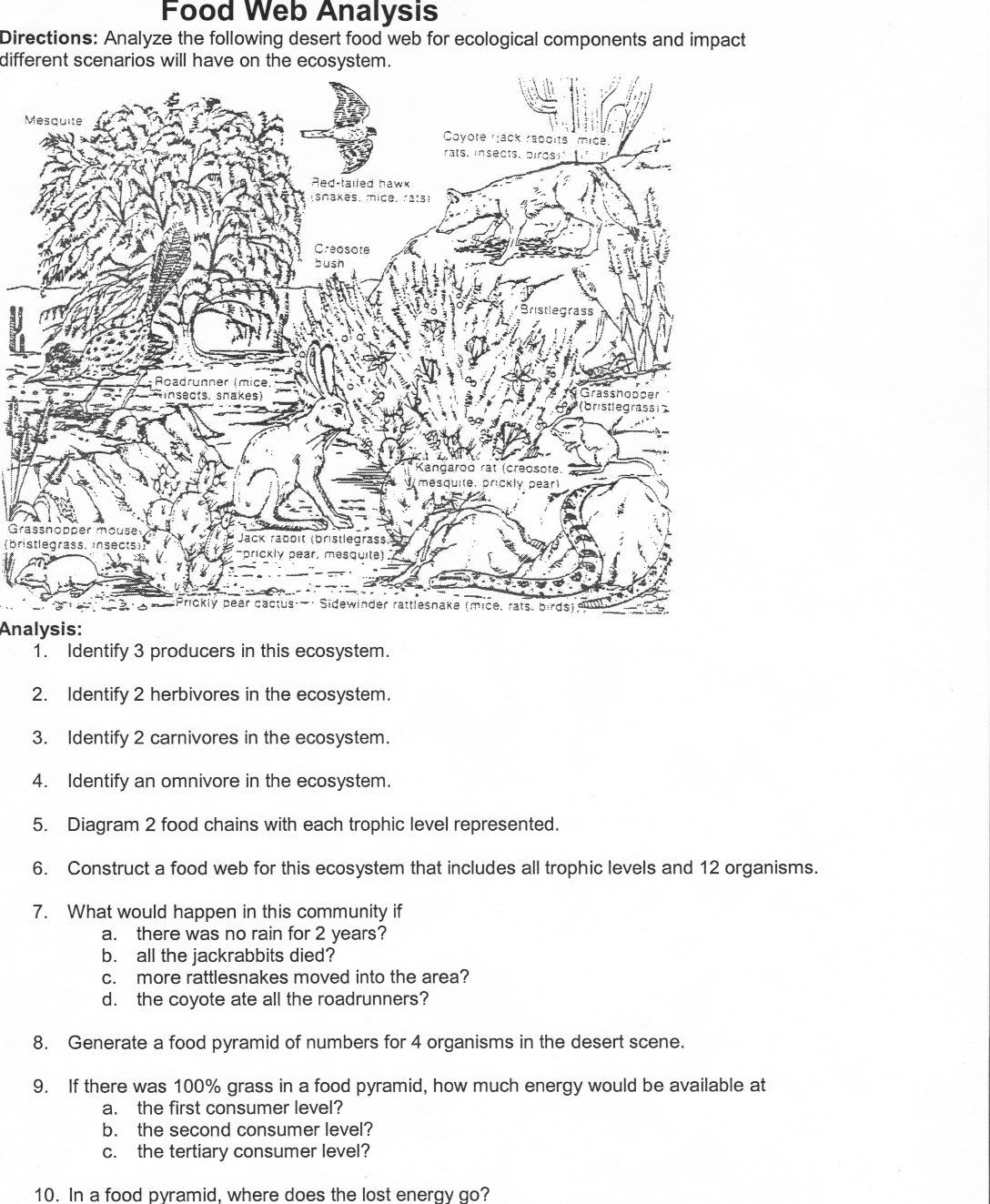 Ecology Worksheets For Middle School Free Worksheets Library – Ecology Worksheets