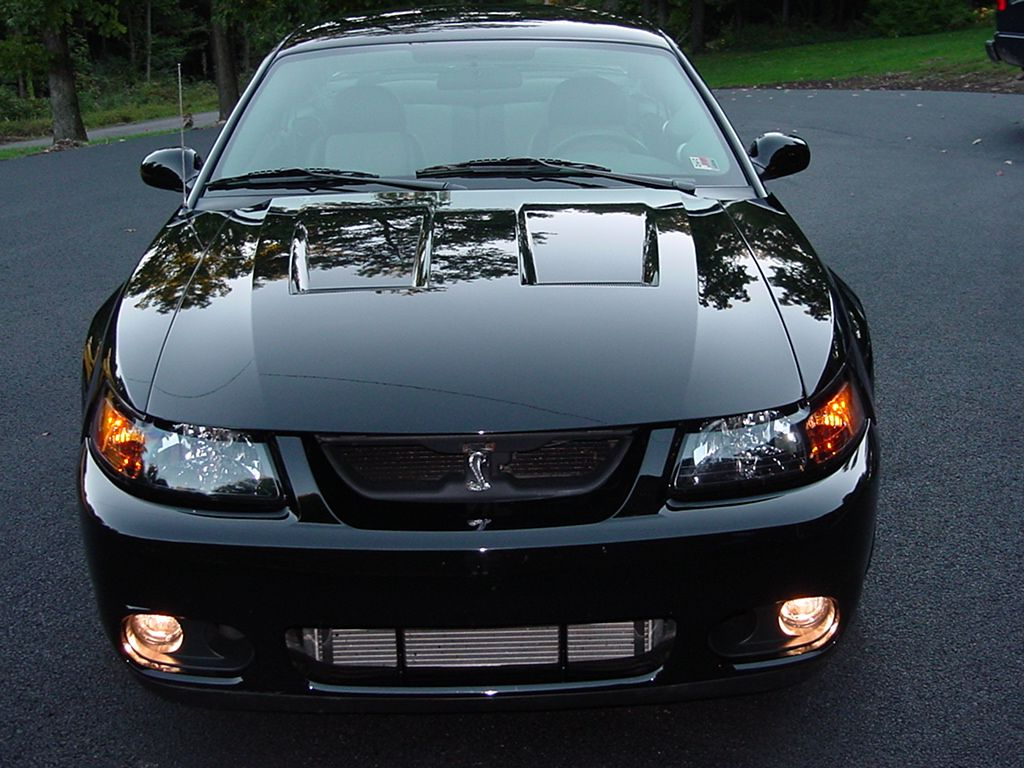 2004 Iconic Cobra Terminator (395 HP) | Autos