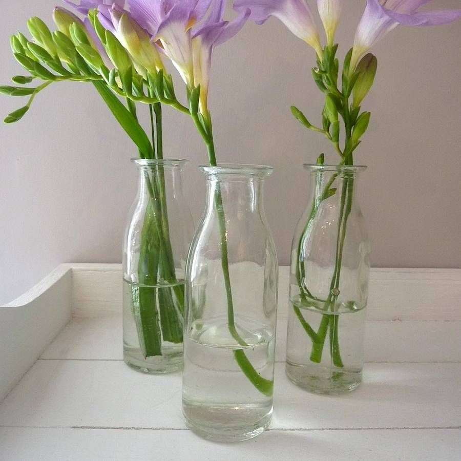 Mini Milk Bottle Vase 玻璃瓶插花 Mini Milk Bottles Bottle Vase Vase