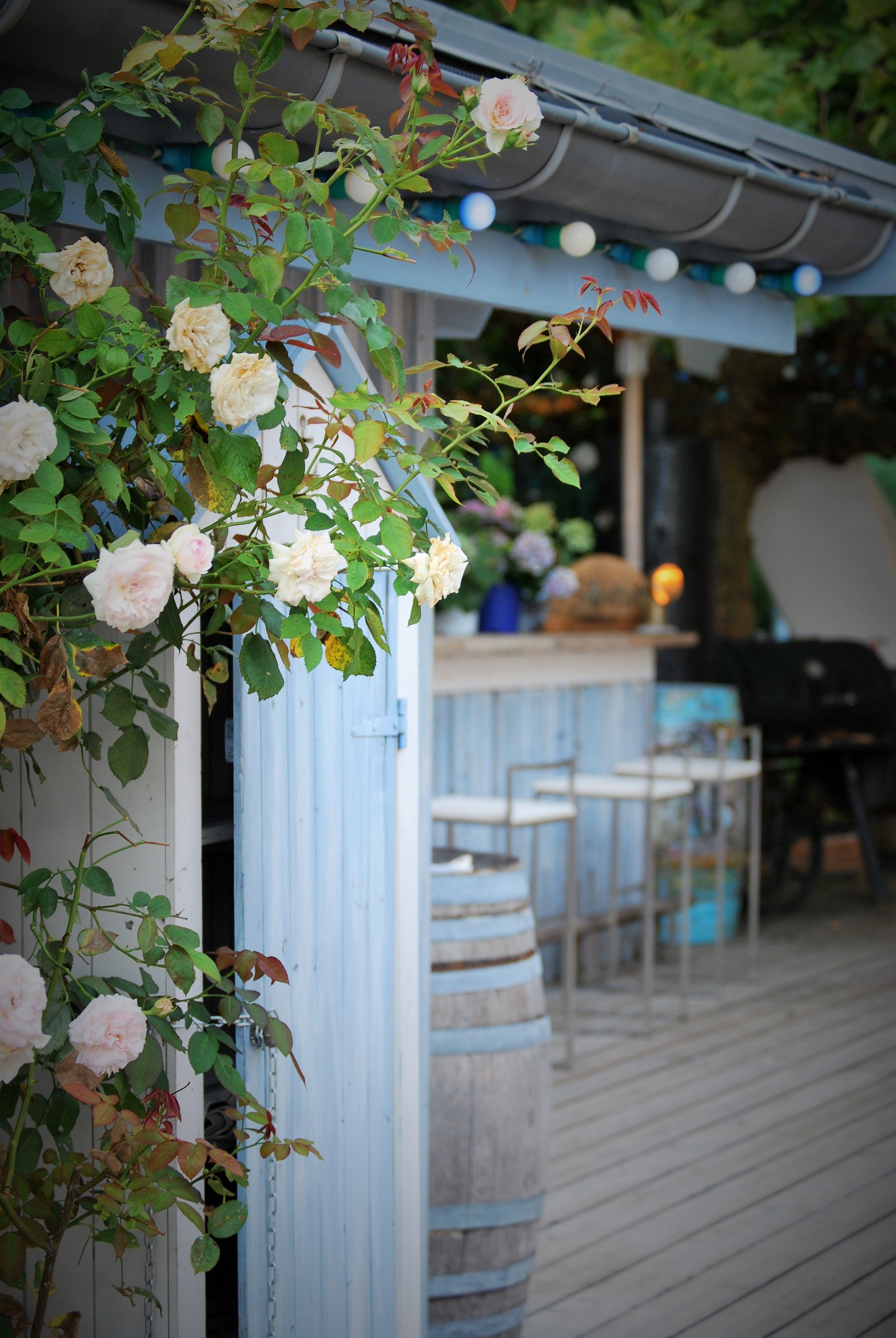 Quoi Faire A Geneve Quand Il Pleut Le Petit Paradis Restaurant Paisible Et Hors Du Temps A Angon La Gazette Des Blondes Annecy Lac Annecy Que Faire A Annecy