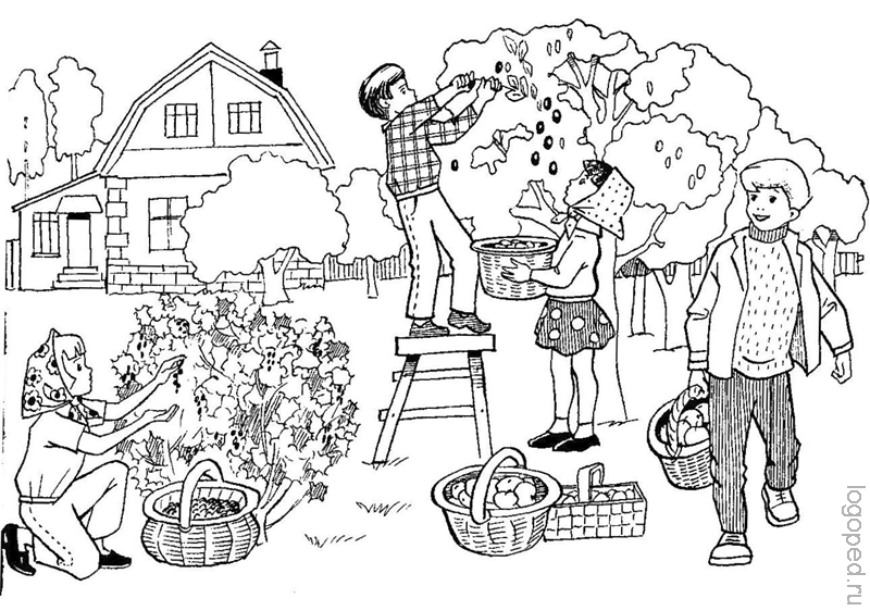 «Лексическая тема 'Труд людей в саду, в огороде ...