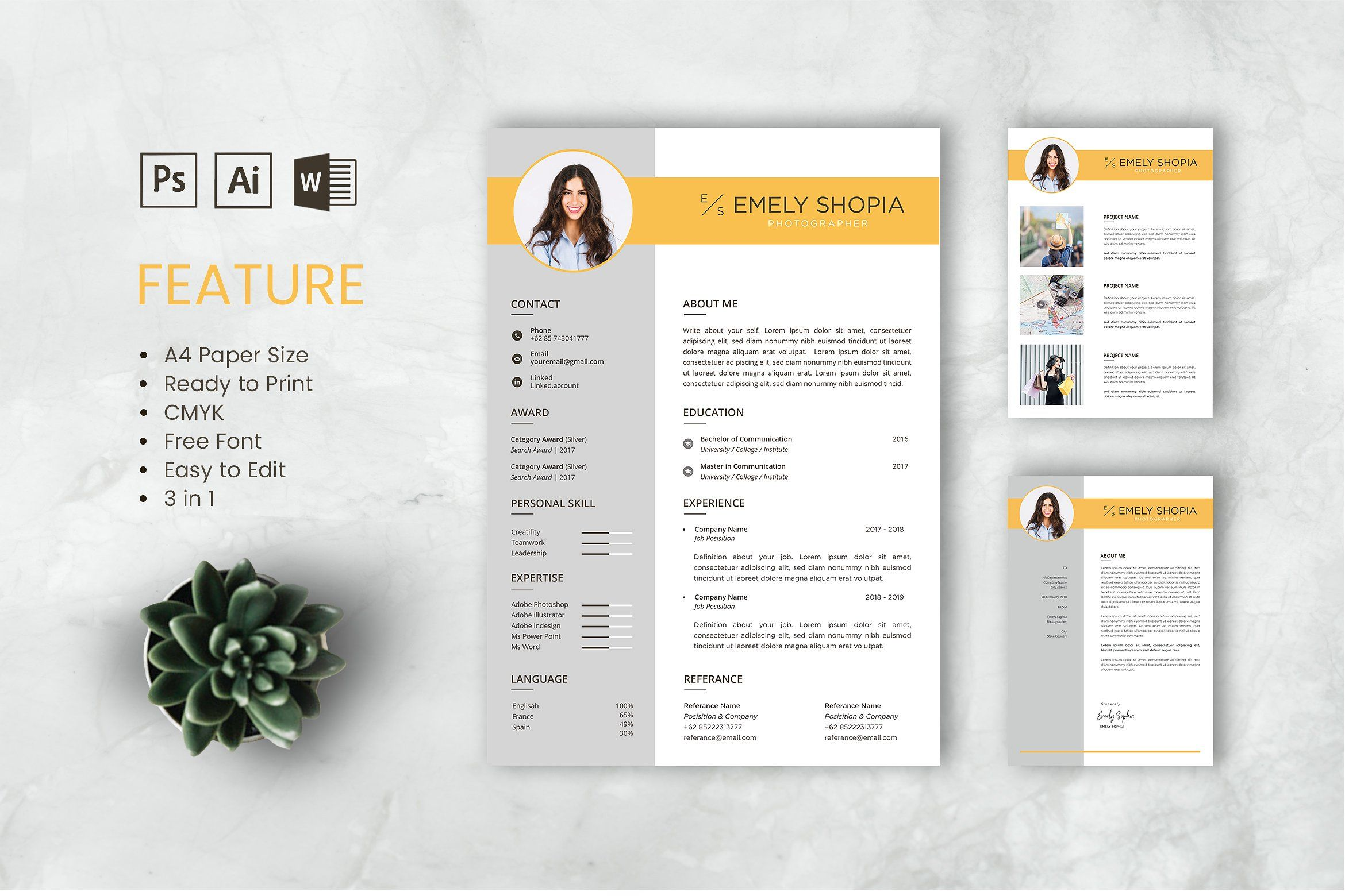 Professional Cv And Resume Template Resume Design Template