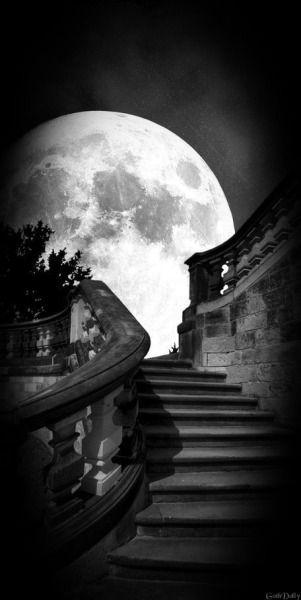 meravigliosa: scala per la luna...