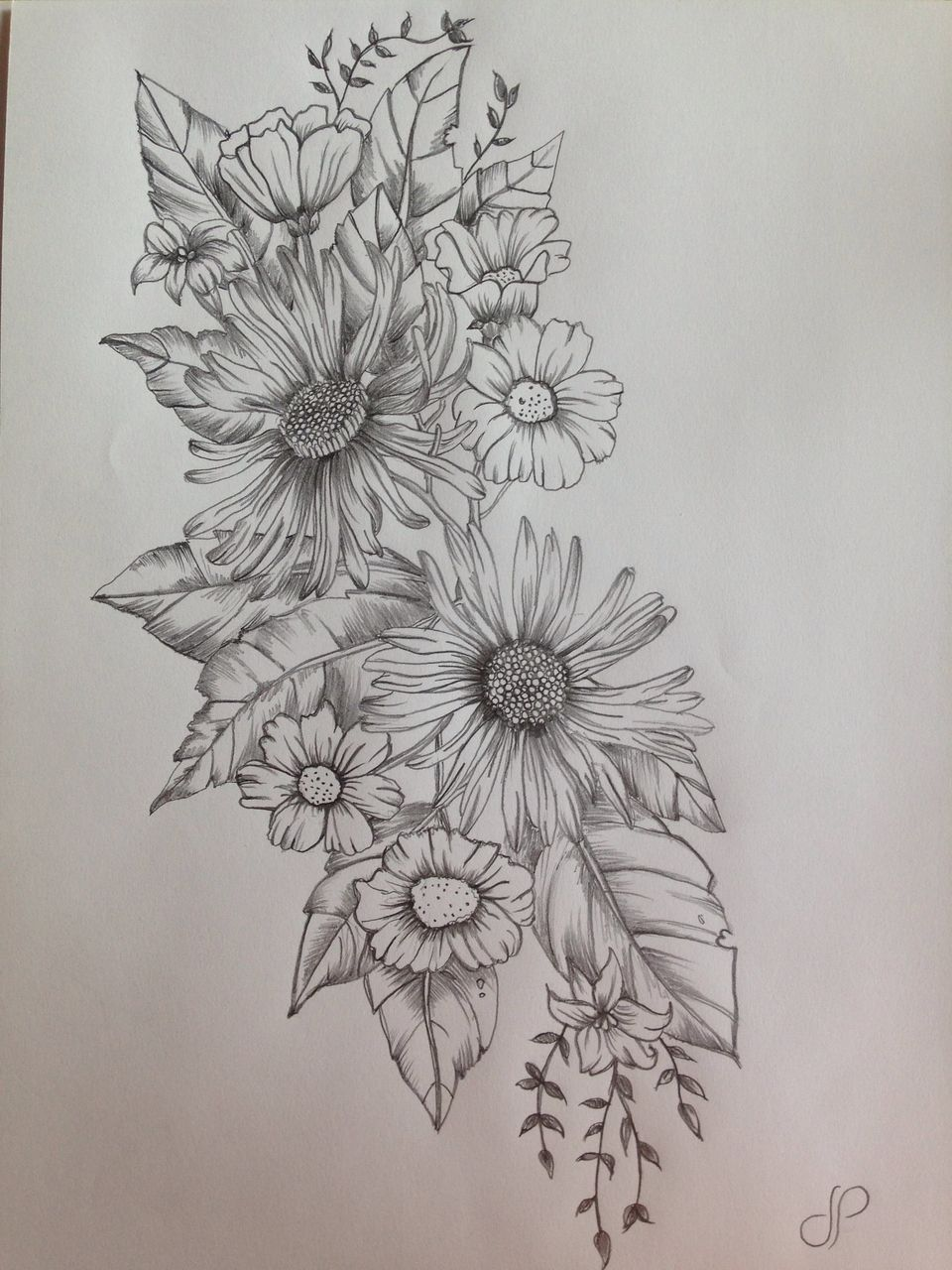 art, black, draw, drawing, flowers, how to, leaves, pencil