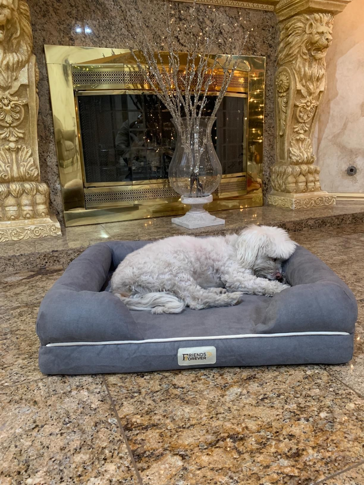 Designed with extra care, your pet's comfort is our