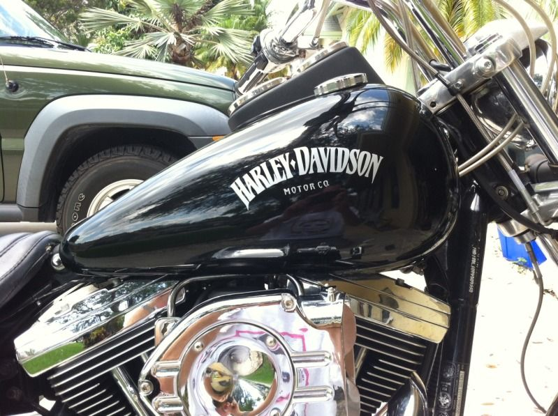 Black Chrome Gas Tank Emblems For Harley Take A Look At My Tank Decals Which Color Is Better