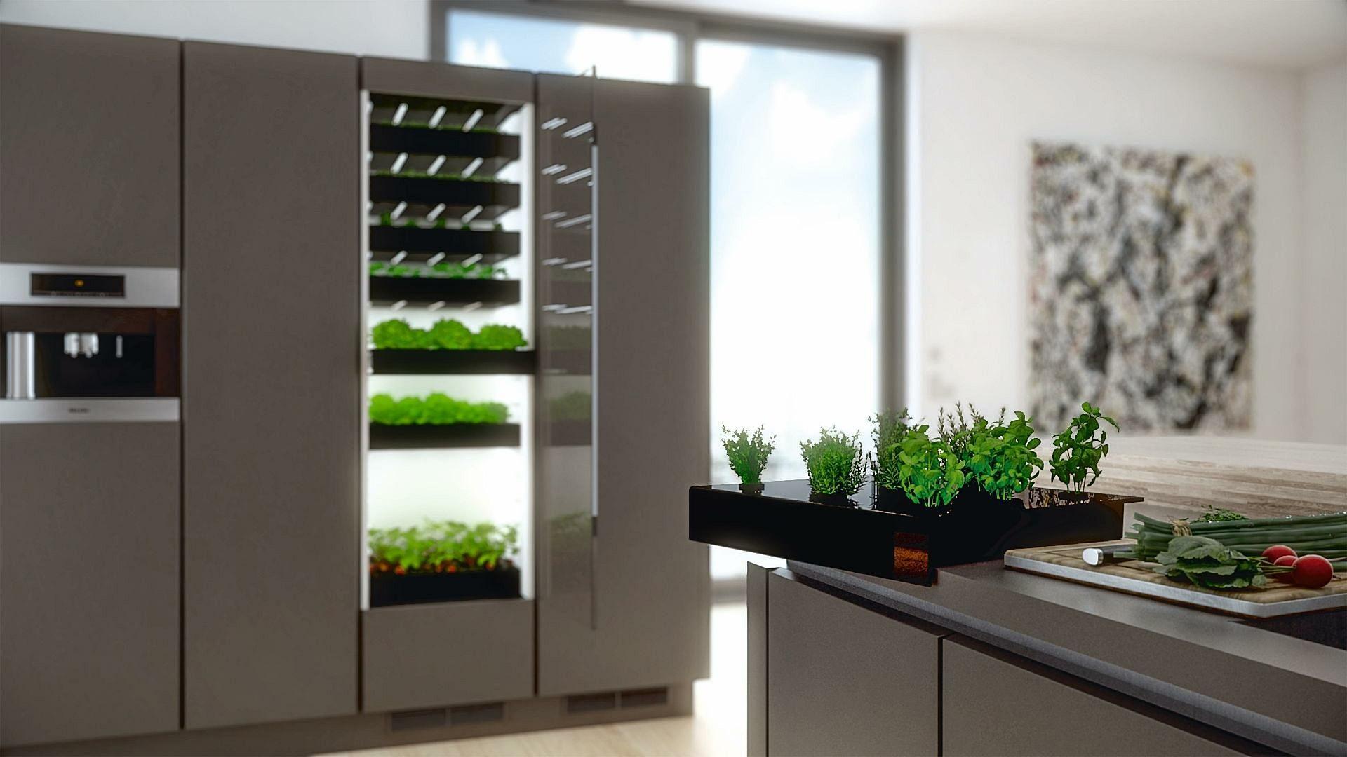 Kitchen Farming An Alternative To Your Usual Kitchen Bora Vertical Vegetable Gardens Farm Kitchen Manufacturers