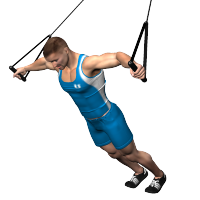 chest fly st  bodyweight workout trx workouts