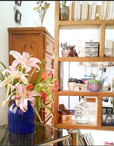 Interior con plantas