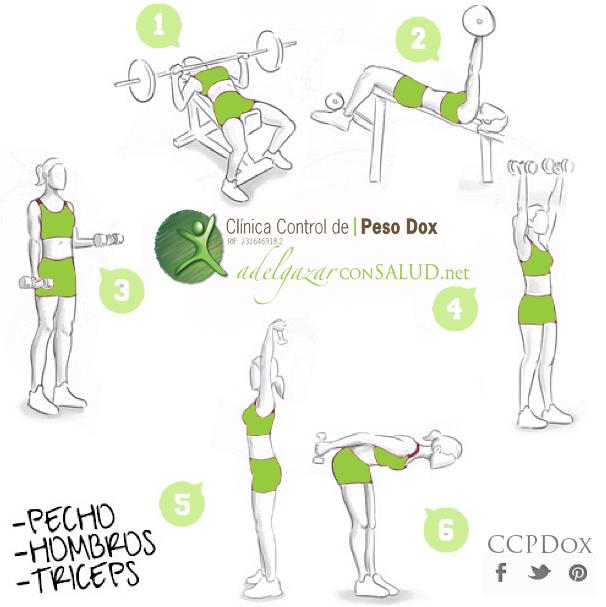 Rutina Para Pecho Y Biceps En Casa