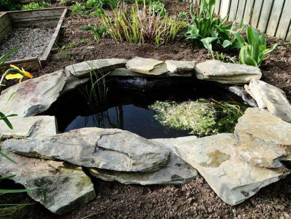 Easy and cheap DIY way to make a pond in the garden ...