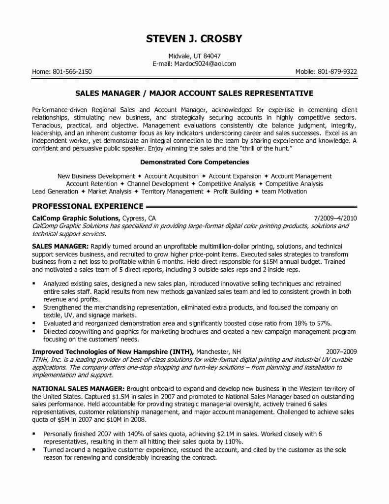 it professional managed service provider resume examples