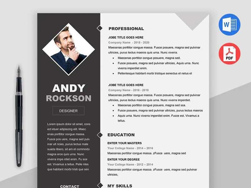 20+ Best Resume Template PSD Free Download (With images
