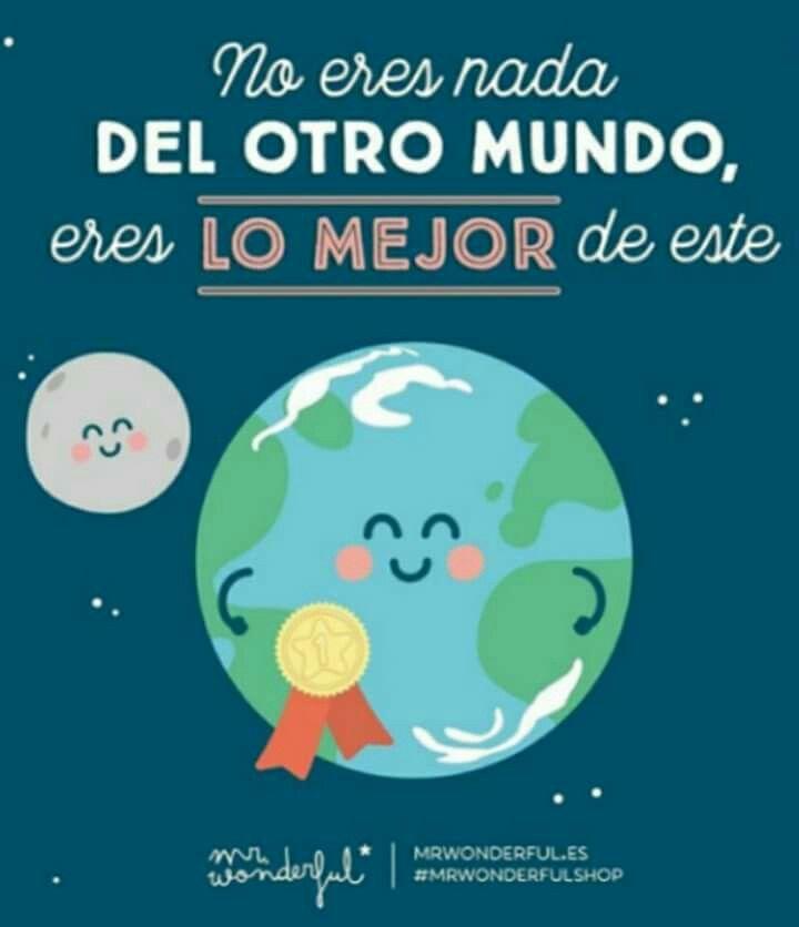 Frase Mr. Wonderful (396)