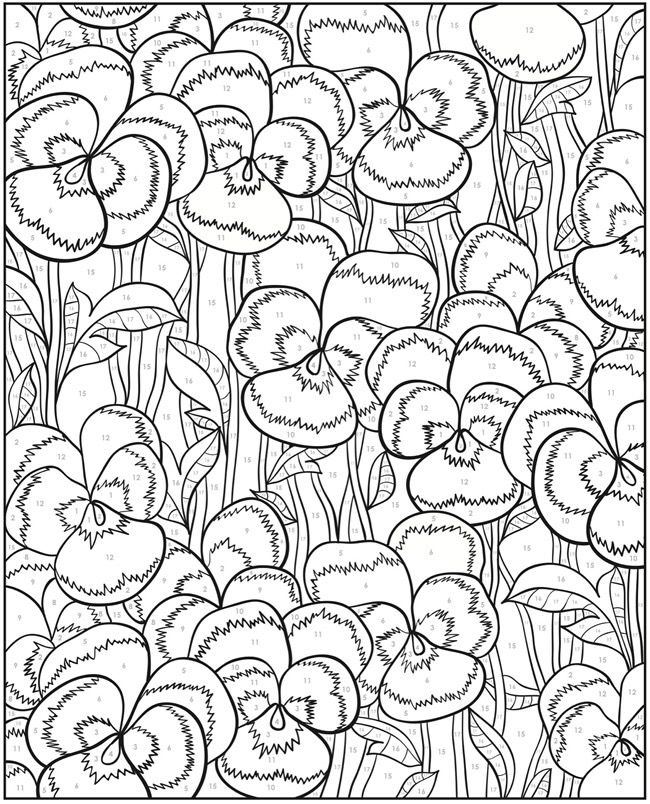 Creative Haven Floral Design Color By Number Coloring Book Dover Publishing Artwork Jessica Mazurkiewicz
